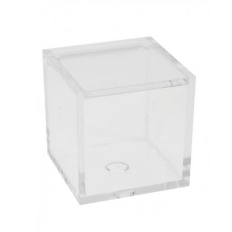 Cubo in plexiglass 5x5x5