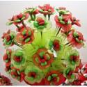 Fiore Quadrifoglio Coccinella